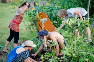 Past students working in the food forest at WLLC. Photo credit- Woody Welch